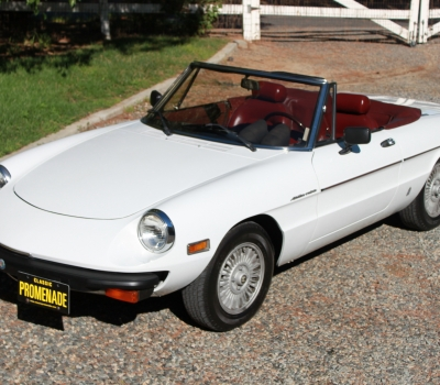 1981 Alfa Romeo Spider Veloce, SoCal Car, Great fun!